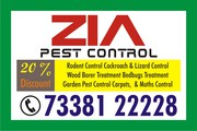Zia Pest Control Service Termite,   Cockroach Bed Bugs Treatment